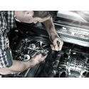 WERA 8767 C TORX® HF 2 Zyklop Bitdoppen set TORX® lang, met vasthoudfunctie